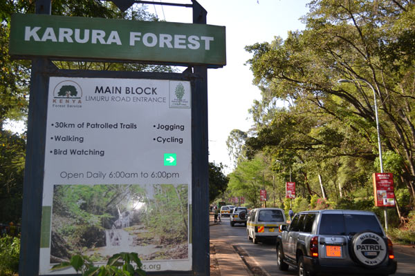 A signpost showing the U.N. road (Crescent) that passes through the forest. Photo credit: Protus Onyango.
