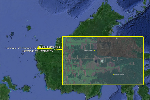 Google Earth image showing GPS points where forest loss occurred within the past year in a West Kalimantan concession held by PT Bumi Mekar Hijau
