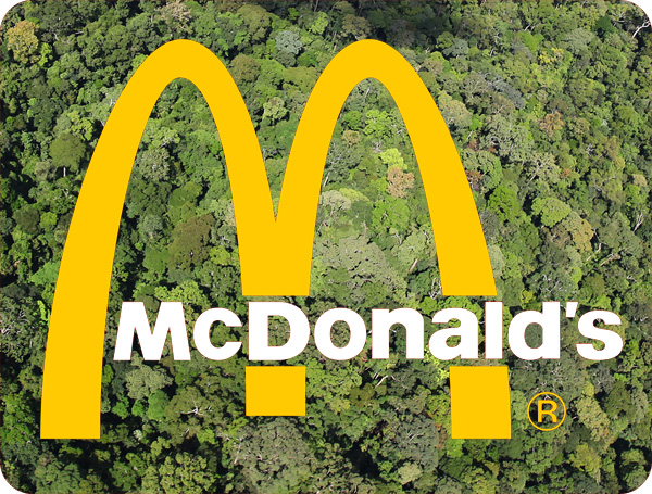 McDonalds zero deforestation policy