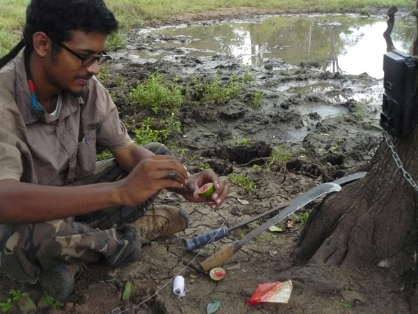Team member Ashwin Philip George prepares a camera trap for deployment. Photo credit: Kiran Prabhu.