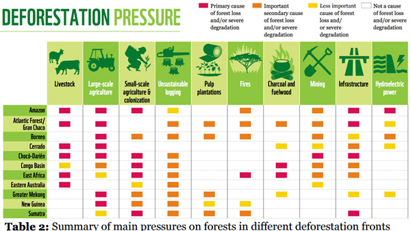 Summary of main pressures on forests in different deforestation fronts. The most common pressures causing deforestation and severe forest degradation are: large and small-scale agriculture; unsustainable logging; mining; infrastructure projects; and increased fire incidence and intensity. New roads can have a small direct impact but a large indirect effect through opening up forests to settlers and agriculture. Poor forest management, destructive logging practices and unsustainable fuelwood collection degrade forests and often instigate an increasing spiral of degradation that eventually leads to deforestation