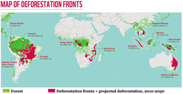 Map of DEFORESTATION FRONTS: WWF has drawn on projections in the Living Forests Model, a major literature survey and interviews with dozens of experts around the world to identify 11 places with major deforestation fronts, highlighted in this map. These places are where the bulk of global deforestation is projected to take take place over the two decades, from 2010 to 2030, under business-as-usual scenarios and without interventions to prevent losses