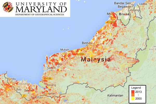 University of Maryland map showing forest loss since 2000 in Sarawak