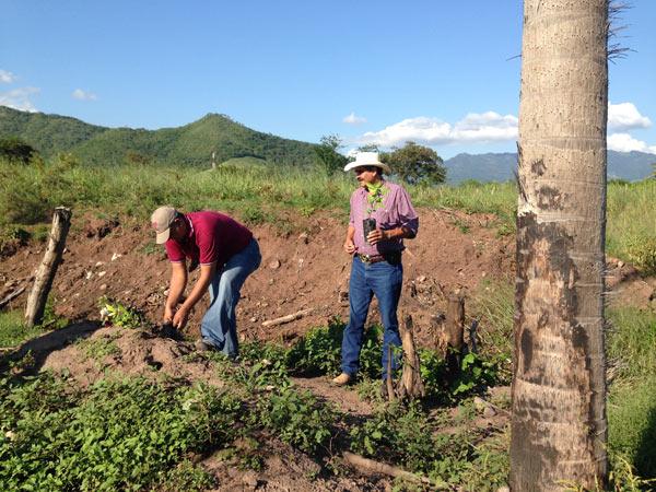 Carlos Cruz Estrada and Daniel Escobar, a promotor with EcoLogic Development Fund, during EcoLogic reforestation. Photo credit: Nick Shufro.
