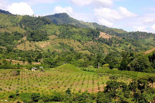 Many land uses within the Pico Bonito landscape. Photo credit: Pat Goudvis.