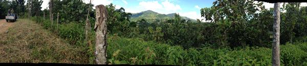Pico Bonito panorama. Photo credit: Nick Shufro.