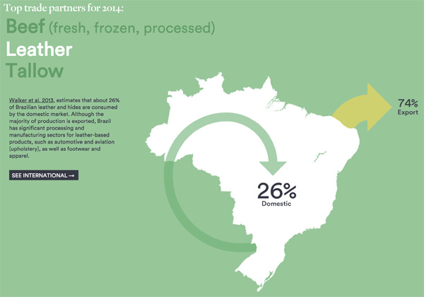 Destination of Brazilian cattle products