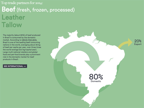 Export of Brazilian cattle products