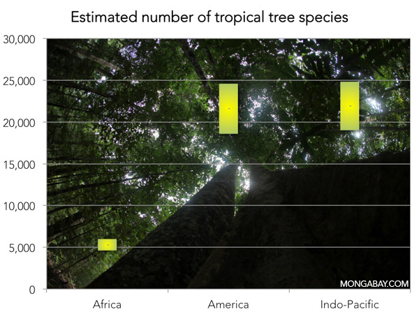 CHART / GRAPH showing the Estimated number of tropical tree species according to Slik et al. (2015)