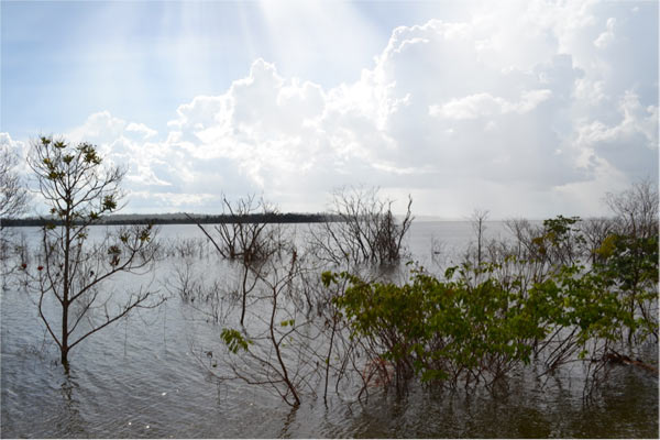 The Santo Antônio reservoir. Tropical reservoirs produce higher carbon emissions than temperate or boreal dams, a factor not considered in UN Intergovernmental Panel on Climate Change dam emission estimates. Photo credit: Philip Fearnside.