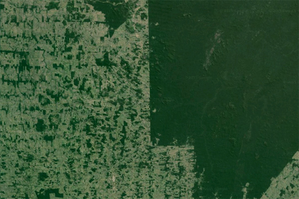 Google Earth image showing the Surui tribe's territory (right) and unprotected areas (left) in the Brazilian state of Rondonia.