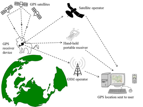 Gps Tracking Systems >> Real-time monitoring: How timely location data can keep ...