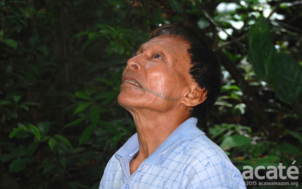 A Matsés shaman named Cesar. Photo courtesy of Acaté.