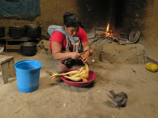 Jhuliño's parents and aunt made the hard hike up out of the canyon and came to the market town of Bagua Chica to help with the search for Jhuliño's body, and to bring it back once it was recovered. Here is his aunt, in her kitchen in Mendan, Tupen's sister town. Someone had told her that there were anacondas in the jungle, and she had dropped to her knees and prayed.