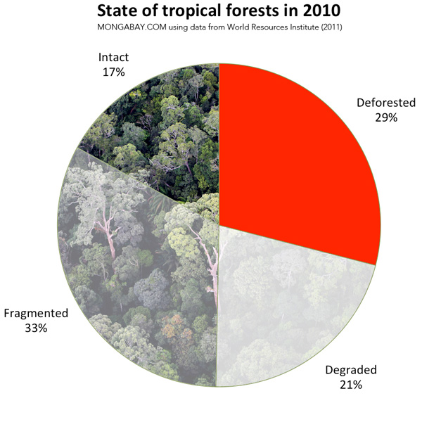 State of the world's tropical forests by deforested, intact, degraded, and fragmented as a percentage of the historial area