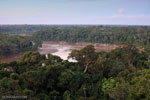 Tambopata river in the heart of Madre de Dios
