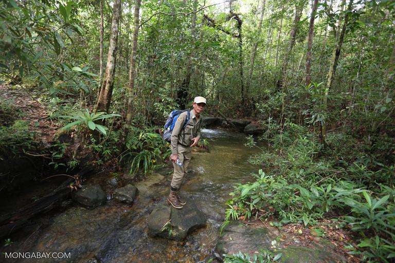 Cambodian wildlife ranger