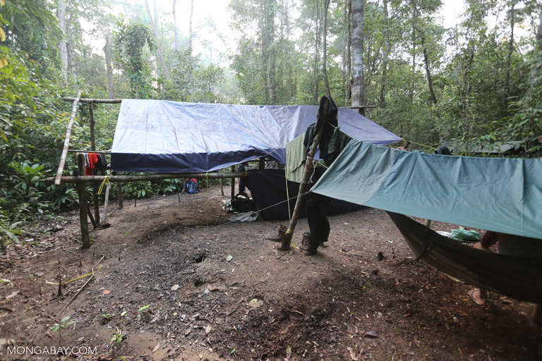 Anti-poaching rangers camping in the Cambodian rainforest
