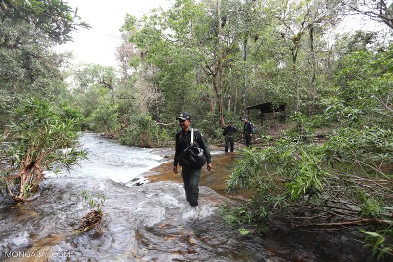 Wildlife rangers in Cambodia