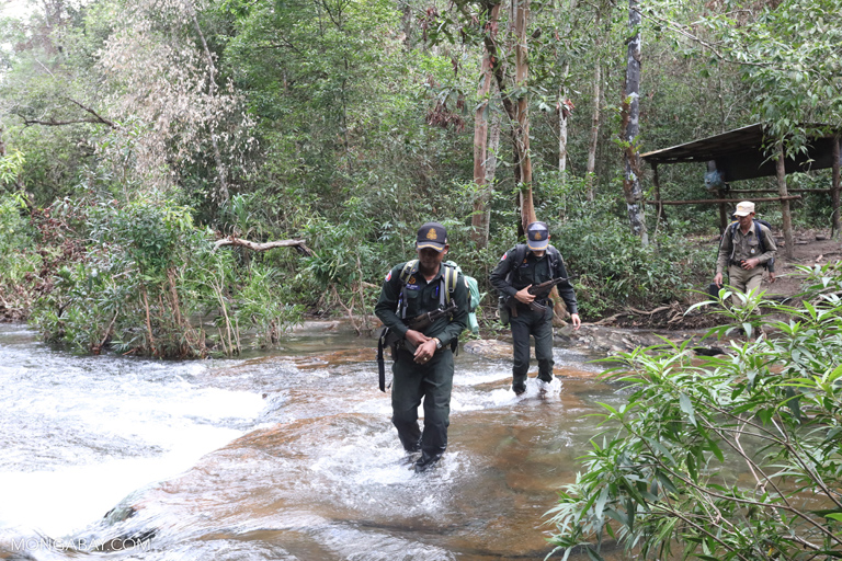 Wildlife rangers in Cambodia