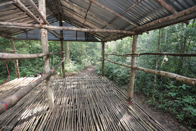 Rainforest camp site in Cambodia
