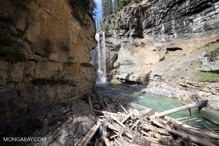 Waterfall on Johnston Creek
