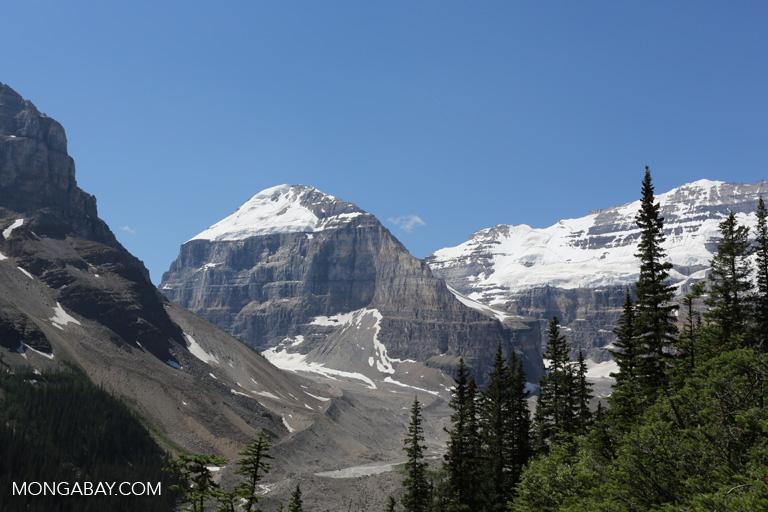 Plain of Six Glaciers