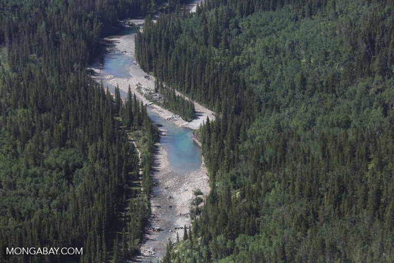 River near Banff