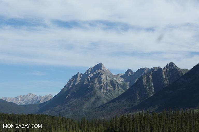 Mountains near Banff