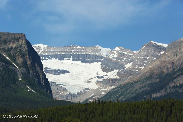 Glaciers near Lake Louise