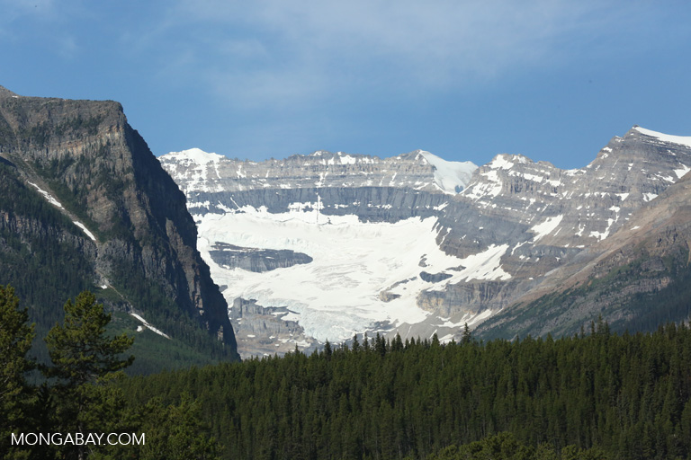 Glaciers near Lake Louise
