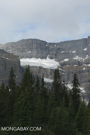 Glaciers near Banff