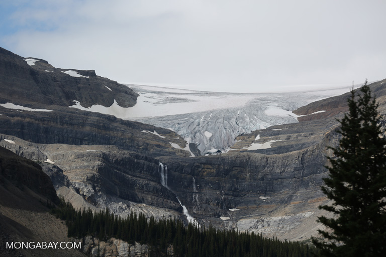 Glaciers near Banff