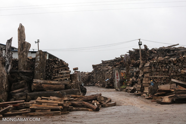 Timber market in China