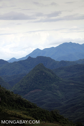 Rainforest, rubber, and mountains in China