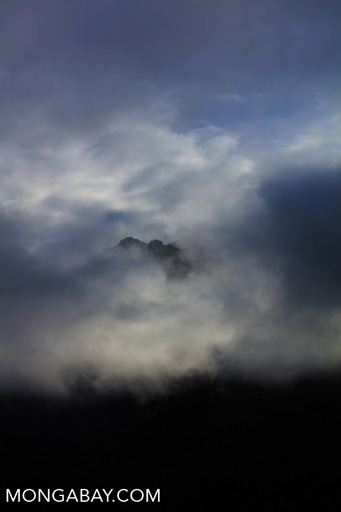 Forested mountain shrouded in clouds