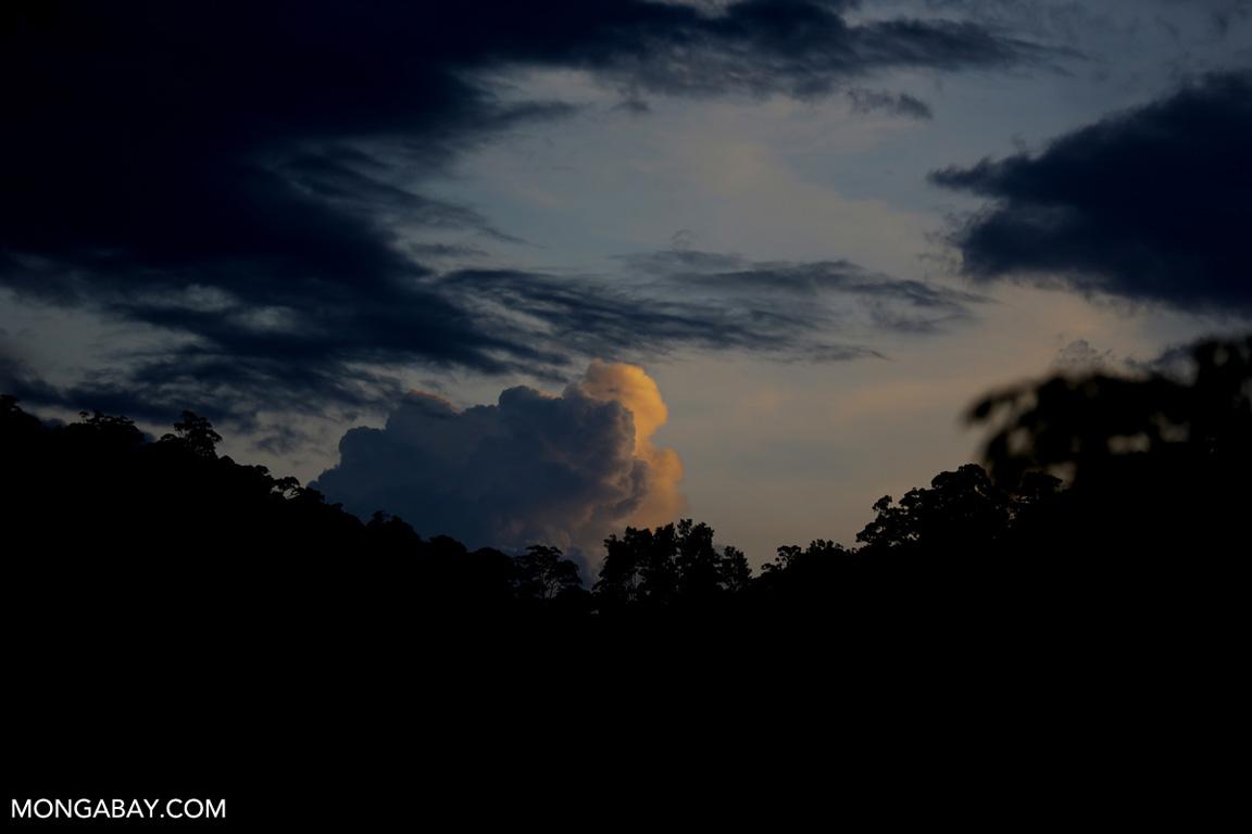 Sunset over the Sumatran rainforest