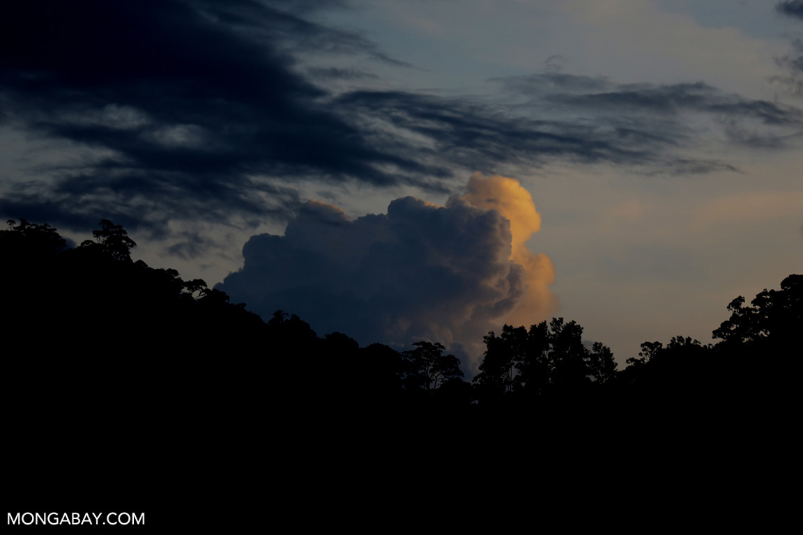 Sunset over the Sumatran rainforest
