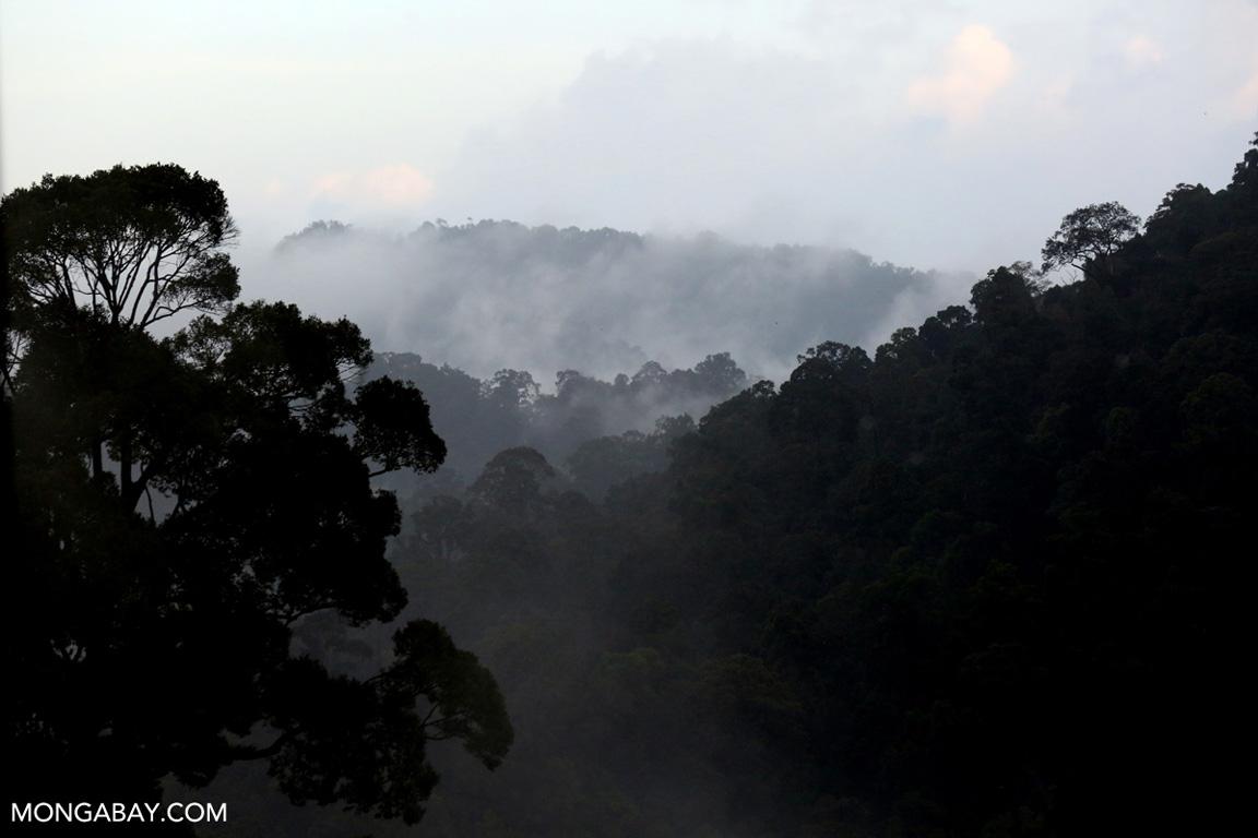 Mist rising over the Sumatra