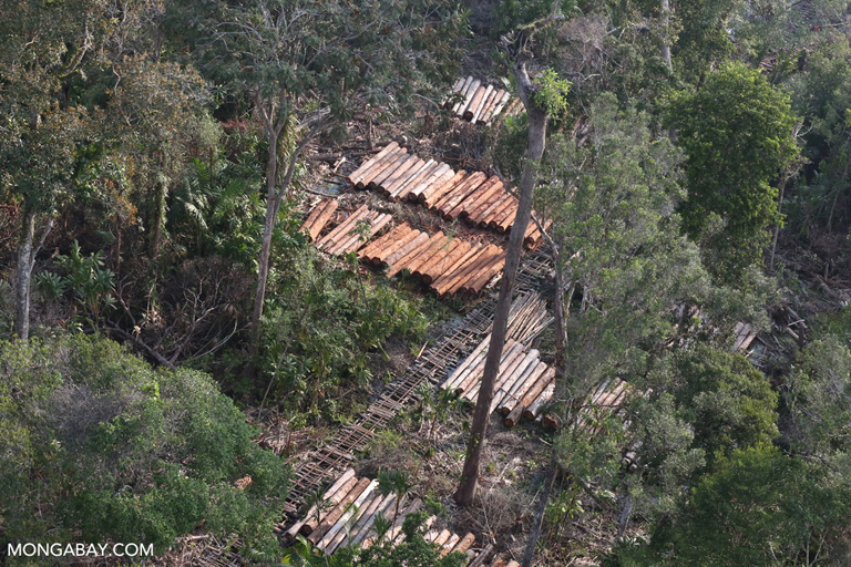 Piles of timber in Riau, Sumatra. Photo by Rhett A. Butler