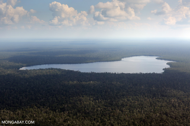 Peat lakes