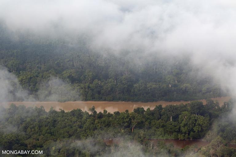 Lowland river in Riau