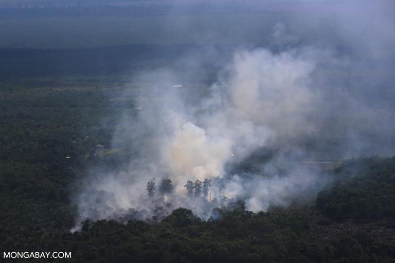 Fire set for land-clearing in Riau, Sumatra. Photo by Rhett A. Butler.
