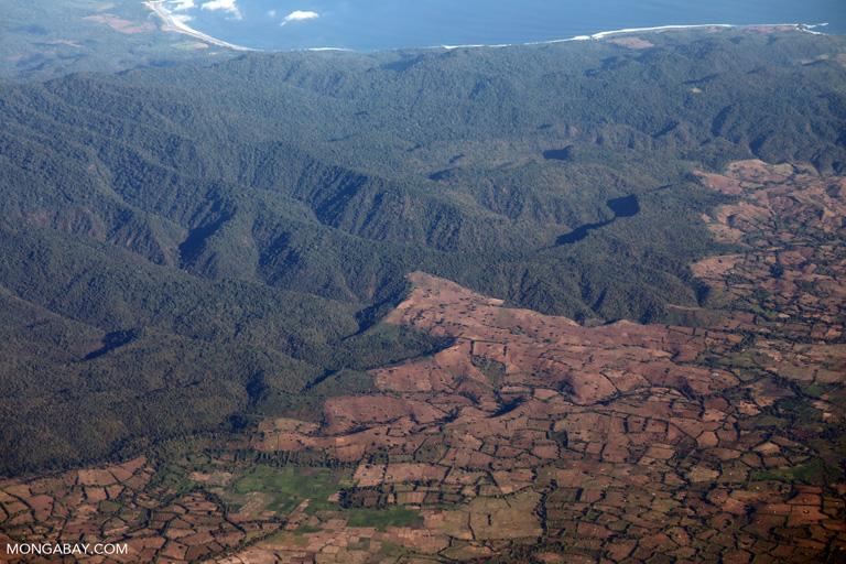 Deforestation on Sambawa