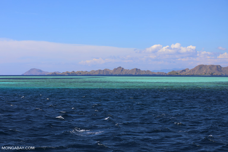 Shallow seas off Komodo Island