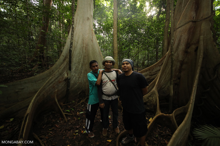 Rainforest guides in Sulawesi