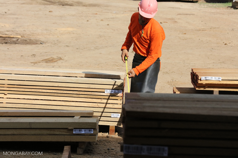 Forestry worker measuring plywood in Peru