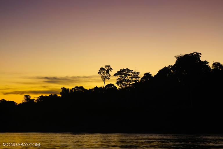 Sunset over the Tambopata rainforest