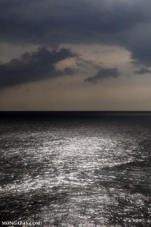 Ocean of Cape Weligama