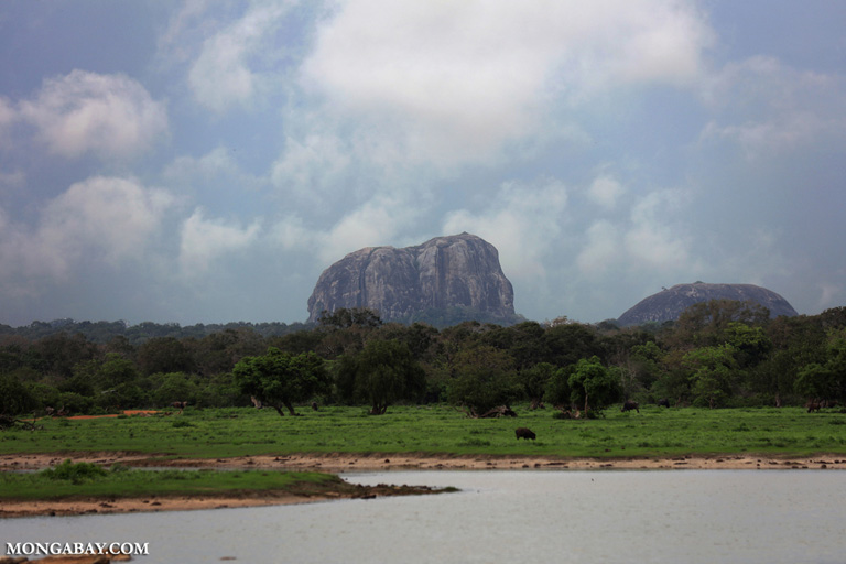 Elephant rock in Yala NP